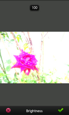 pm_brightness_max.jpg