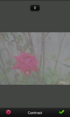pm_contrast_min.jpg
